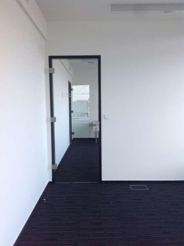Celoskleněné dveře v hliníkové zárubni